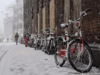 Macbike: Amsterdam by Bike